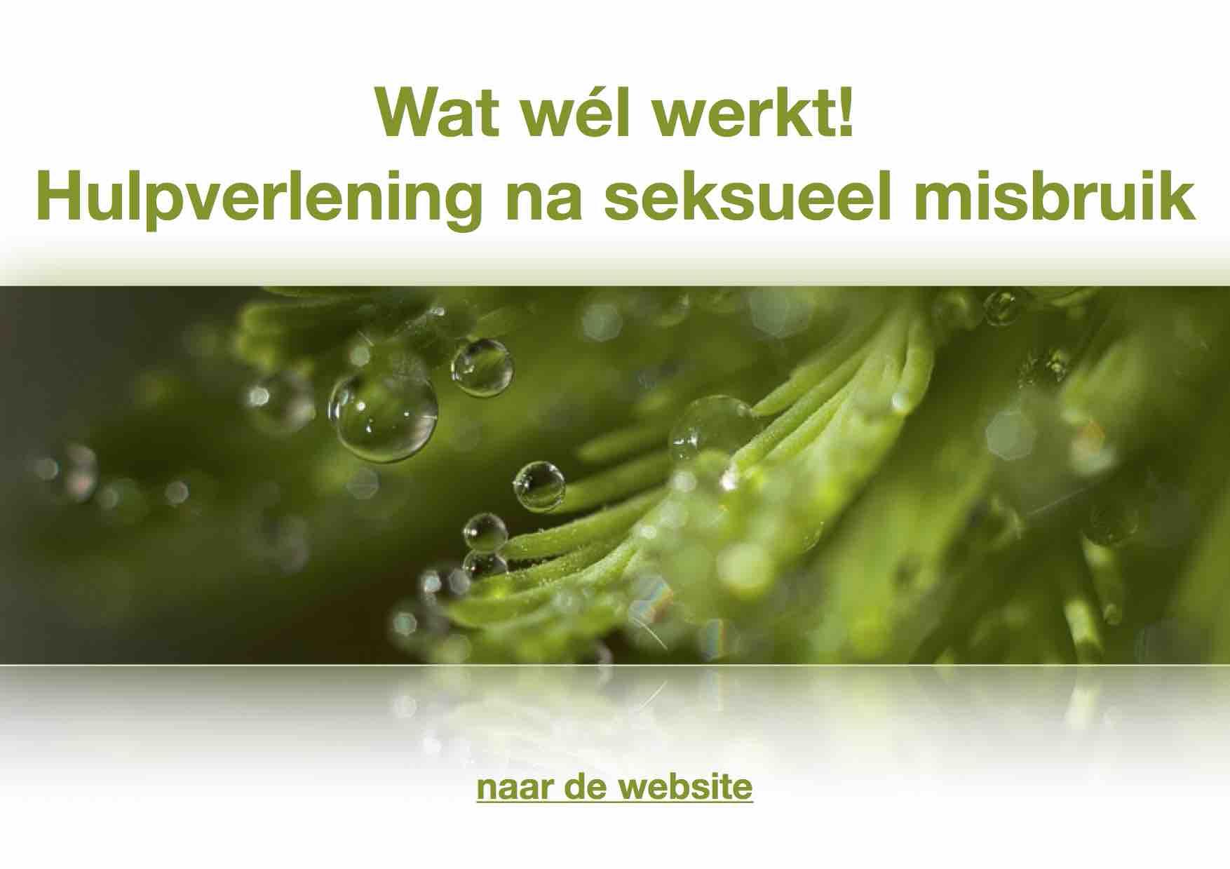 banner-website-hulpv-na-seks-misbruik