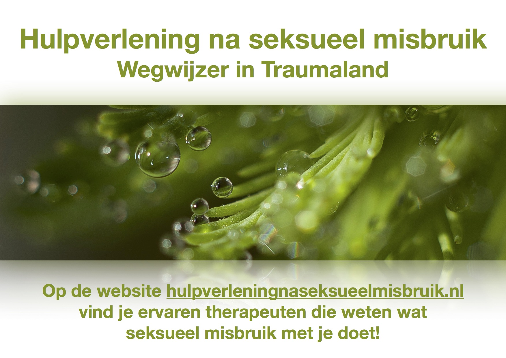Banner website hulpv
